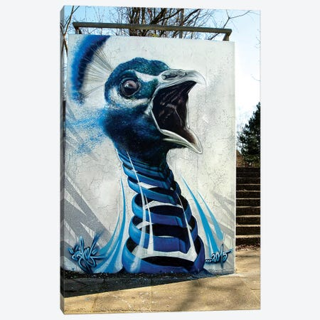Peacock Wall Canvas Print #JYN43} by JAYN Art Print