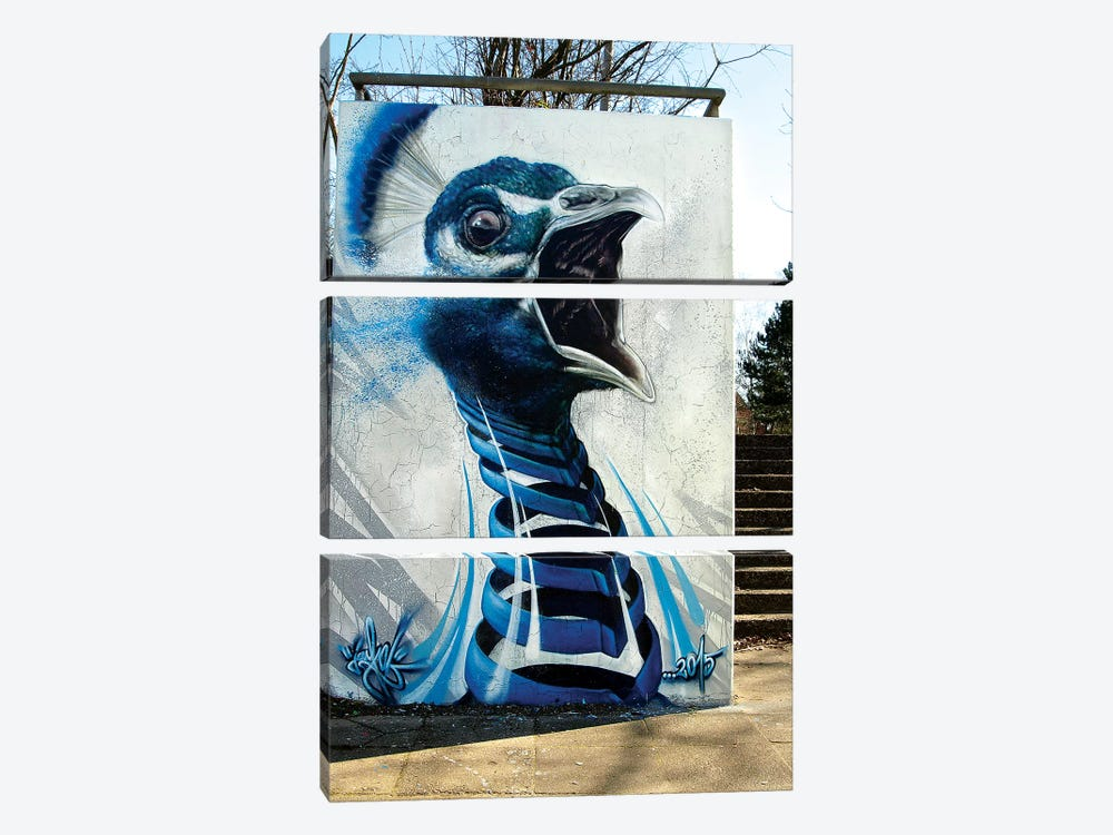 Peacock Wall by JAYN 3-piece Canvas Artwork