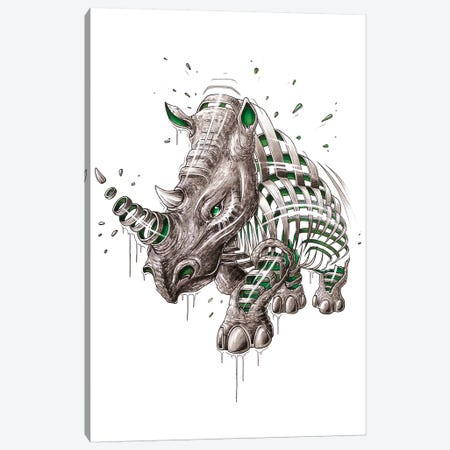 Rhino Slice Canvas Print #JYN48} by JAYN Canvas Art Print