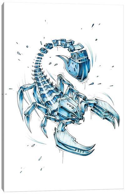Scorpion Slice Canvas Art Print