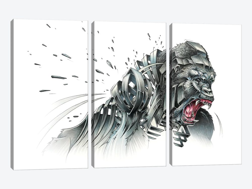 Silverback by JAYN 3-piece Canvas Artwork
