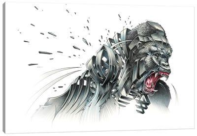 Silverback Canvas Art Print
