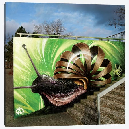 Snail Canvas Print #JYN55} by JAYN Art Print