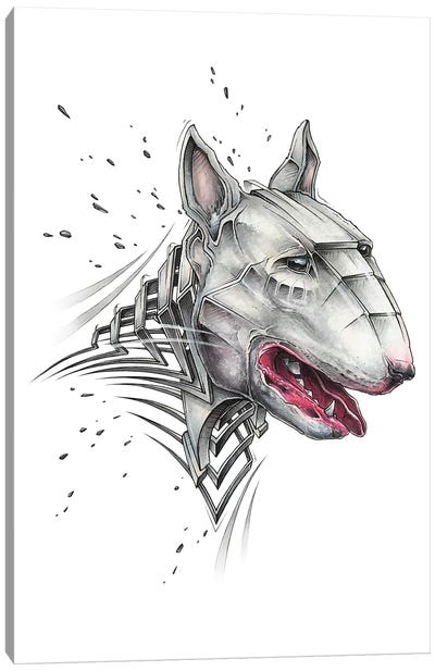 Bull Terrier by JAYN Canvas Art Print
