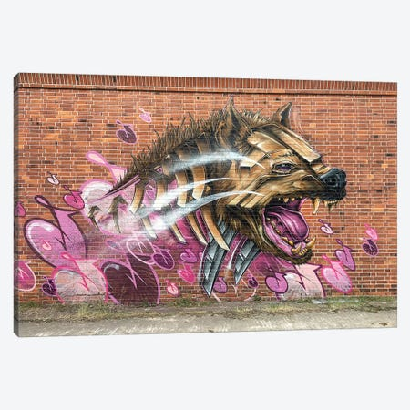 Hyena Wall Canvas Print #JYN67} by JAYN Canvas Artwork