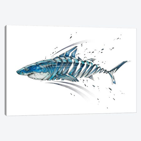 Shark Canvas Print #JYN69} by JAYN Art Print