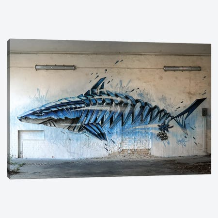 Shark Wall II Canvas Print #JYN70} by JAYN Canvas Artwork