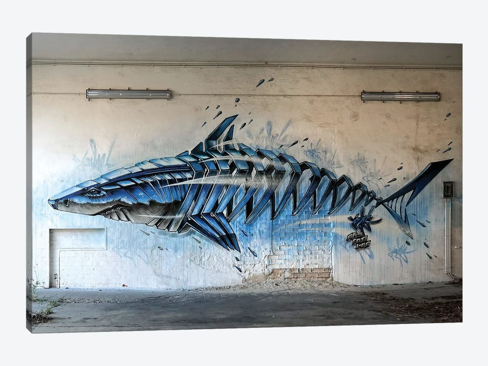 Shark Wall II by JAYN 1-piece Canvas Wall Art