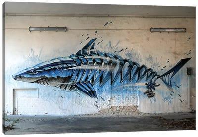 Shark Wall II Canvas Art Print