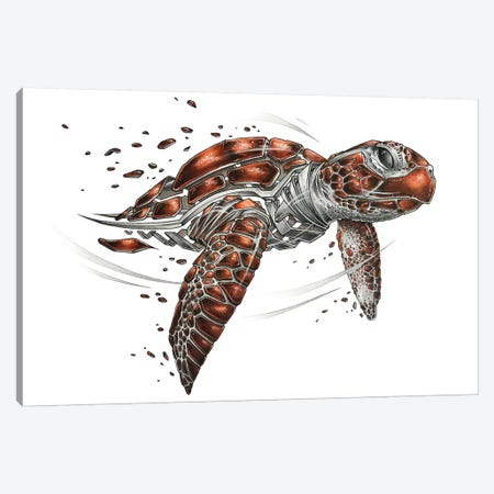 Turtle Canvas Print #JYN71} by JAYN Canvas Art