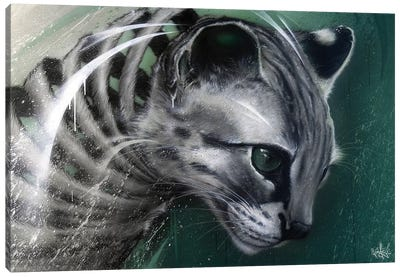 Wildcat Slice Canvas Art Print