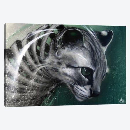 Wildcat Slice Canvas Print #JYN73} by JAYN Canvas Wall Art