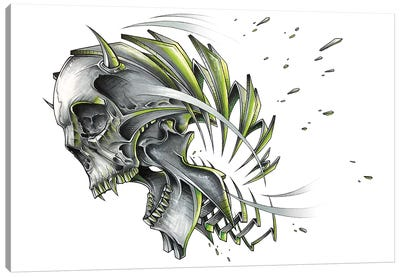 Skull Slice Canvas Art Print