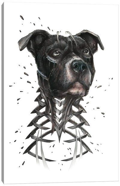 Black Pitbull Slice Canvas Art Print