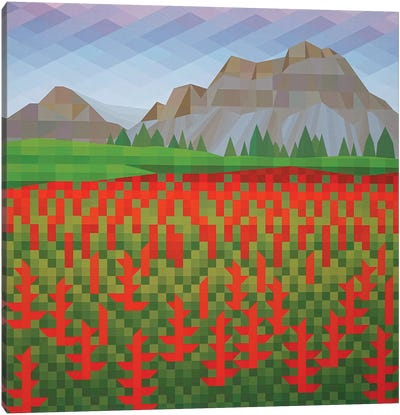 Field of Poppies Canvas Art Print