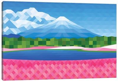 Pink Fields Canvas Art Print