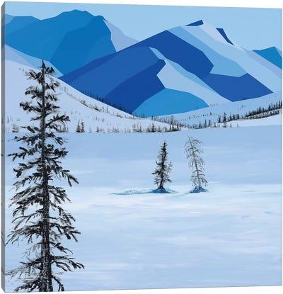 Wintery Fields Canvas Art Print