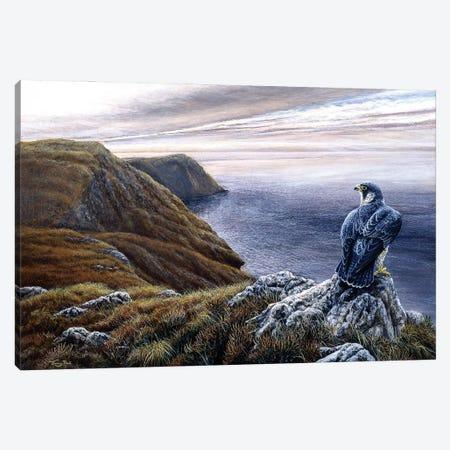 Coastal Skies - Peregrine Canvas Print #JYP100} by Jeremy Paul Canvas Wall Art