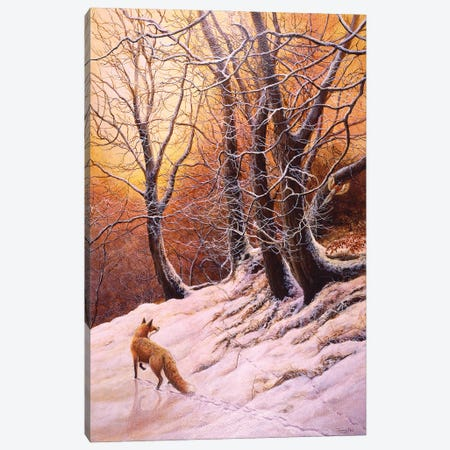 Winter Glow - Fox And Pheasant Canvas Print #JYP103} by Jeremy Paul Canvas Artwork