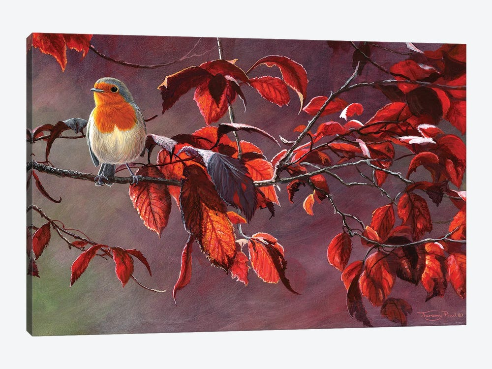 Robin by Jeremy Paul 1-piece Canvas Wall Art