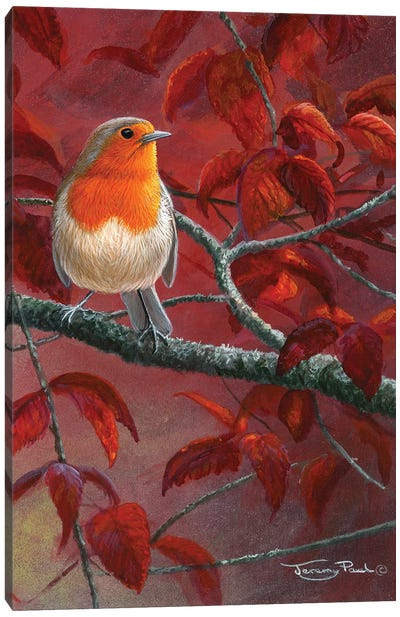 Red Leaves - Robin Canvas Art Print