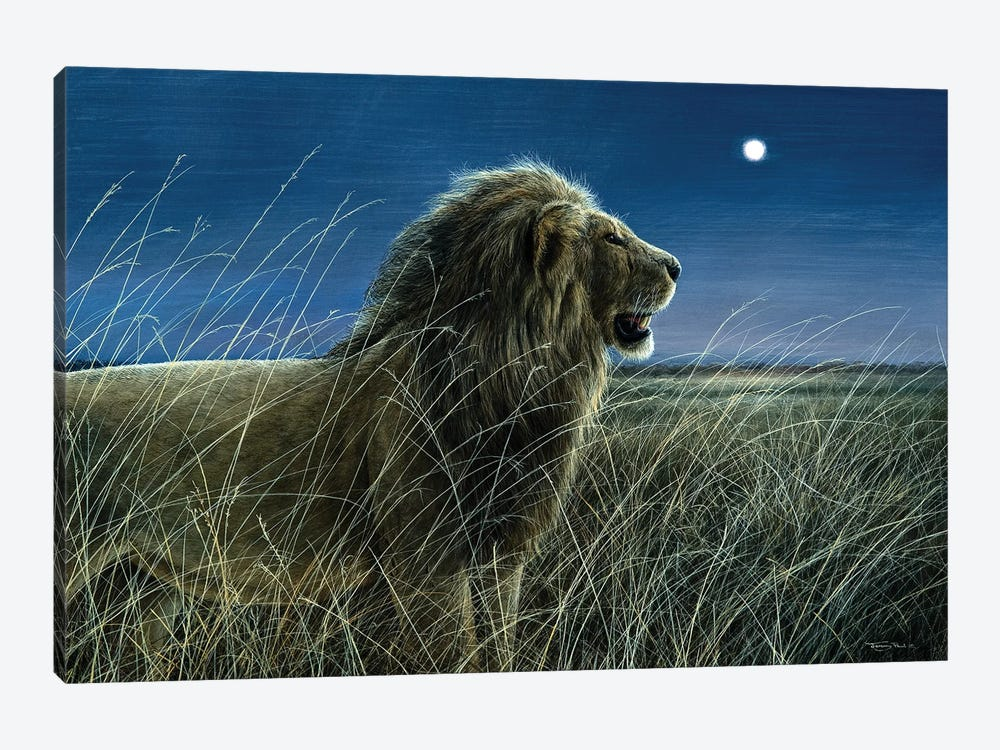 Moonlight On The Mara by Jeremy Paul 1-piece Canvas Print