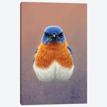 Bluebird Canvas Print #JYP23} by Jeremy Paul Canvas Art Print