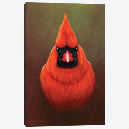 Cardinal Canvas Print #JYP24} by Jeremy Paul Canvas Art
