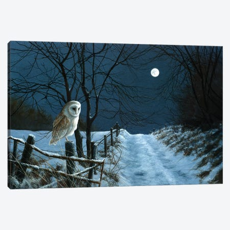 Hunter's Moon - Barn Owl Canvas Print #JYP2} by Jeremy Paul Canvas Print