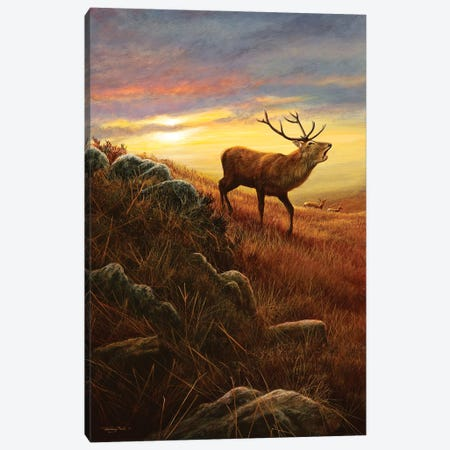 Mountain Light Canvas Print #JYP33} by Jeremy Paul Canvas Art