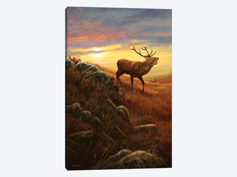 Mountain Light 1-piece Canvas Art Print
