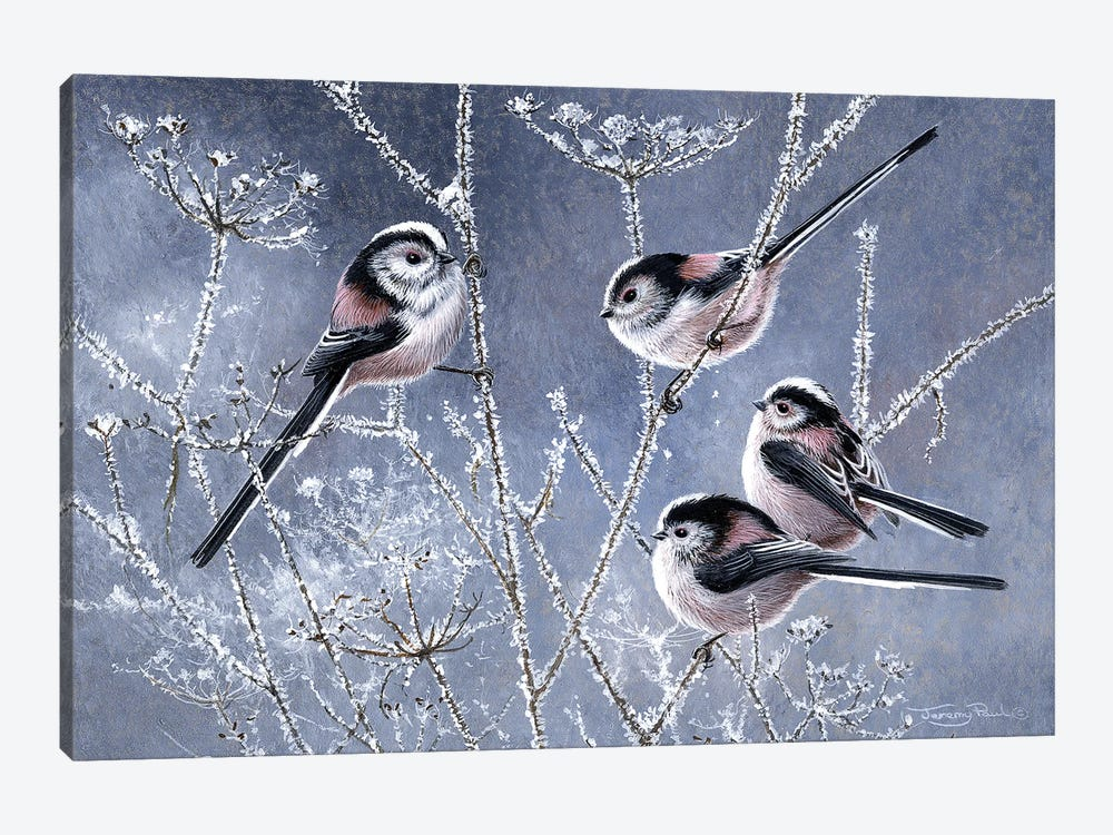 Frosty Morning - Long Tailed Tits by Jeremy Paul 1-piece Art Print