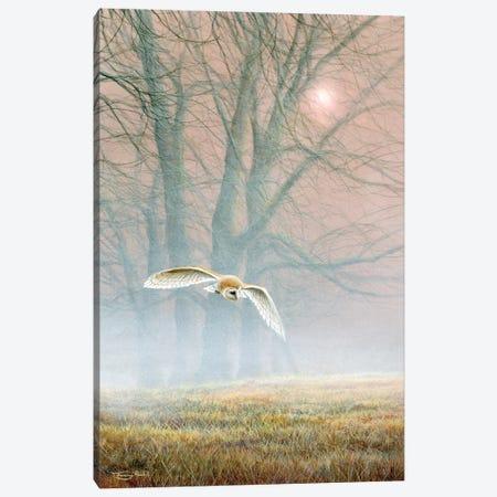 Ghost In The Mist - Barn Owl Canvas Print #JYP3} by Jeremy Paul Canvas Art Print