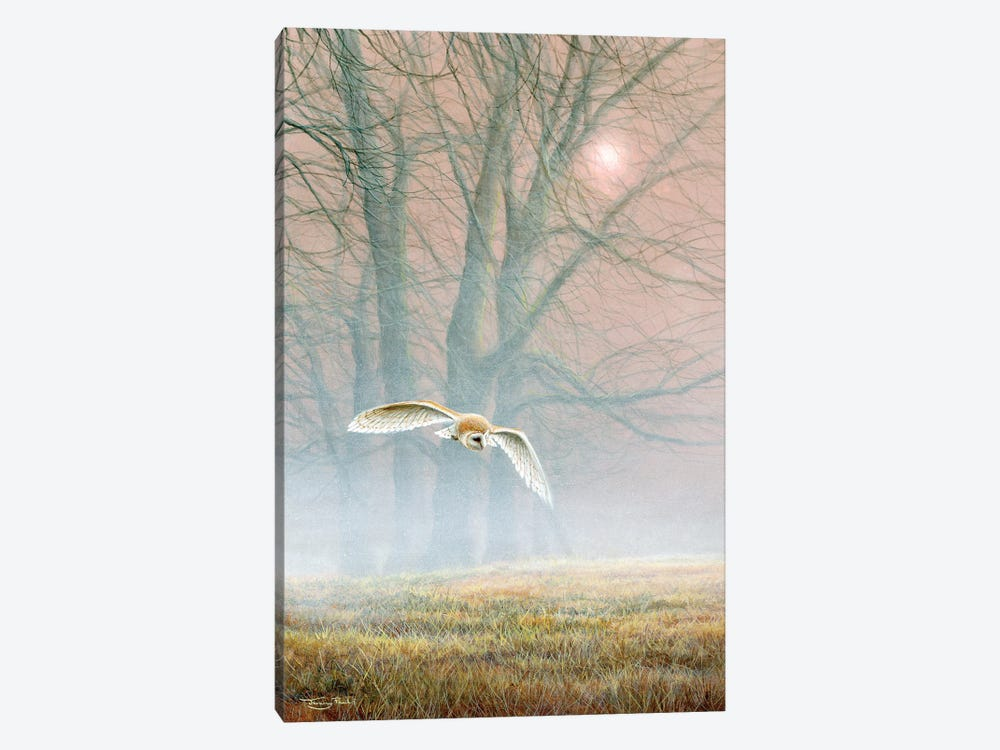 Ghost In The Mist - Barn Owl by Jeremy Paul 1-piece Canvas Artwork