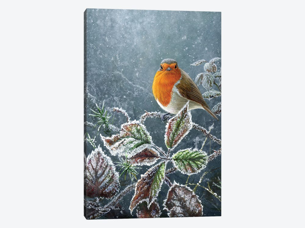 Touch Of Frost - Robin by Jeremy Paul 1-piece Canvas Artwork