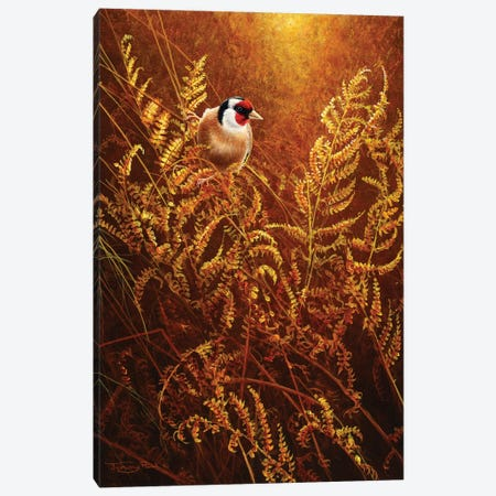Autumn Ferns - Goldfinch Canvas Print #JYP46} by Jeremy Paul Canvas Artwork