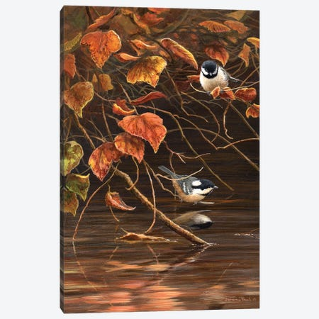 Autumn Leaves - Coal Tits Canvas Print #JYP47} by Jeremy Paul Canvas Wall Art