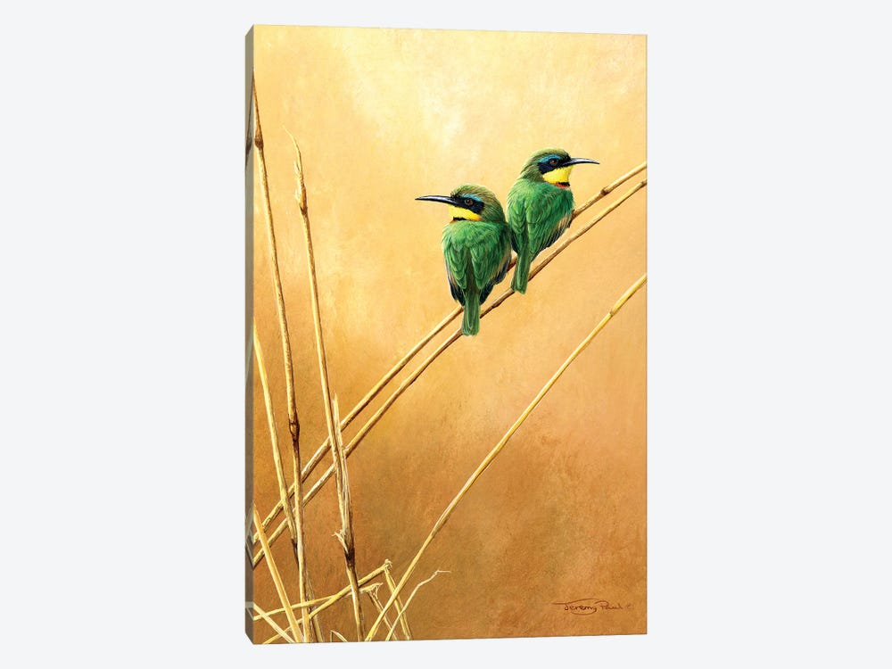 Little Bee -Eaters by Jeremy Paul 1-piece Canvas Print