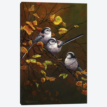 Long Tailed Tits - Autumn Canvas Print #JYP55} by Jeremy Paul Art Print