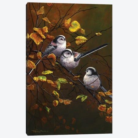 Long Tailed Tits - Autumn Canvas Print #JYP55} by Jeremy Paul Art Print