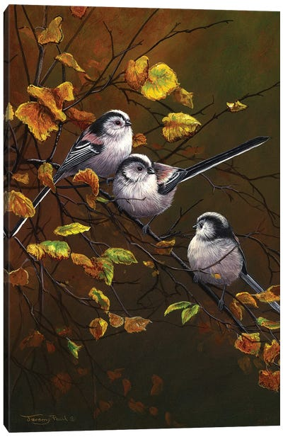 Long Tailed Tits - Autumn Canvas Art Print