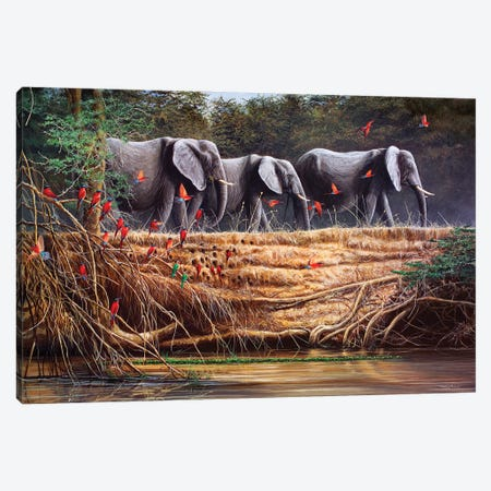 Passing By - Elephants And Bee-Eaters Canvas Print #JYP56} by Jeremy Paul Canvas Print