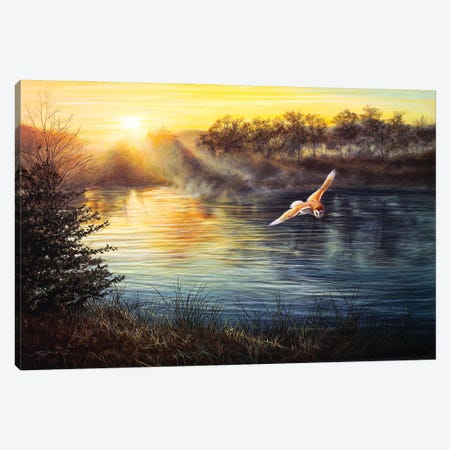 River Light - Barn Owl Canvas Print #JYP57} by Jeremy Paul Canvas Art Print
