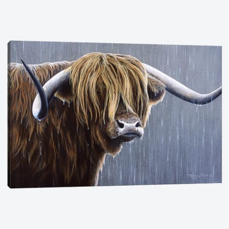 Highlander Canvas Print #JYP62} by Jeremy Paul Canvas Art Print