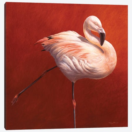 Flame Bird Canvas Print #JYP65} by Jeremy Paul Canvas Art