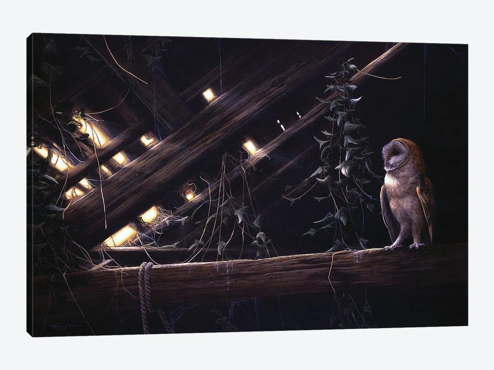 Barn Owl by Jeremy Paul 1-piece Art Print