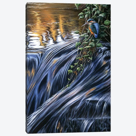 Kingfisher Falls Canvas Print #JYP69} by Jeremy Paul Canvas Art Print