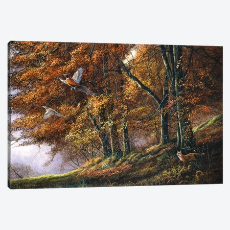 Autumn - Fox And Pheasants Canvas Print #JYP72} by Jeremy Paul Canvas Wall Art