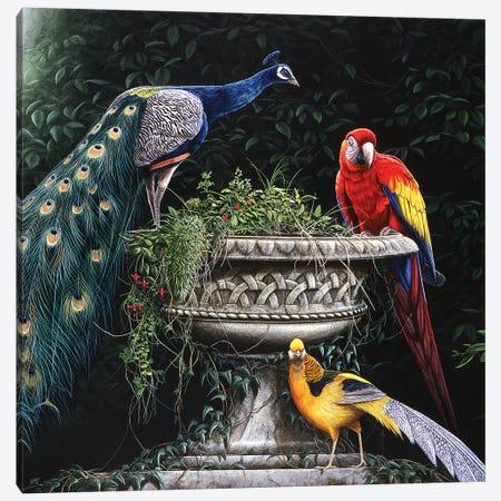 Exotica Canvas Print #JYP73} by Jeremy Paul Canvas Artwork