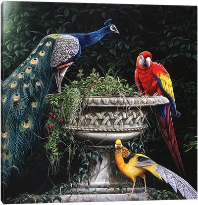 Exotica Canvas Art Print